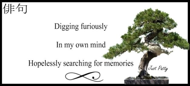 haiku memory loss