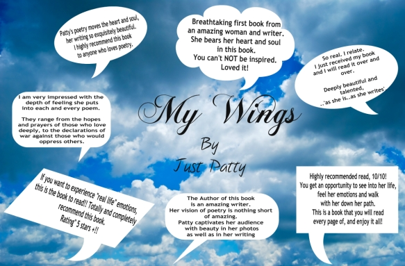 My wings comments
